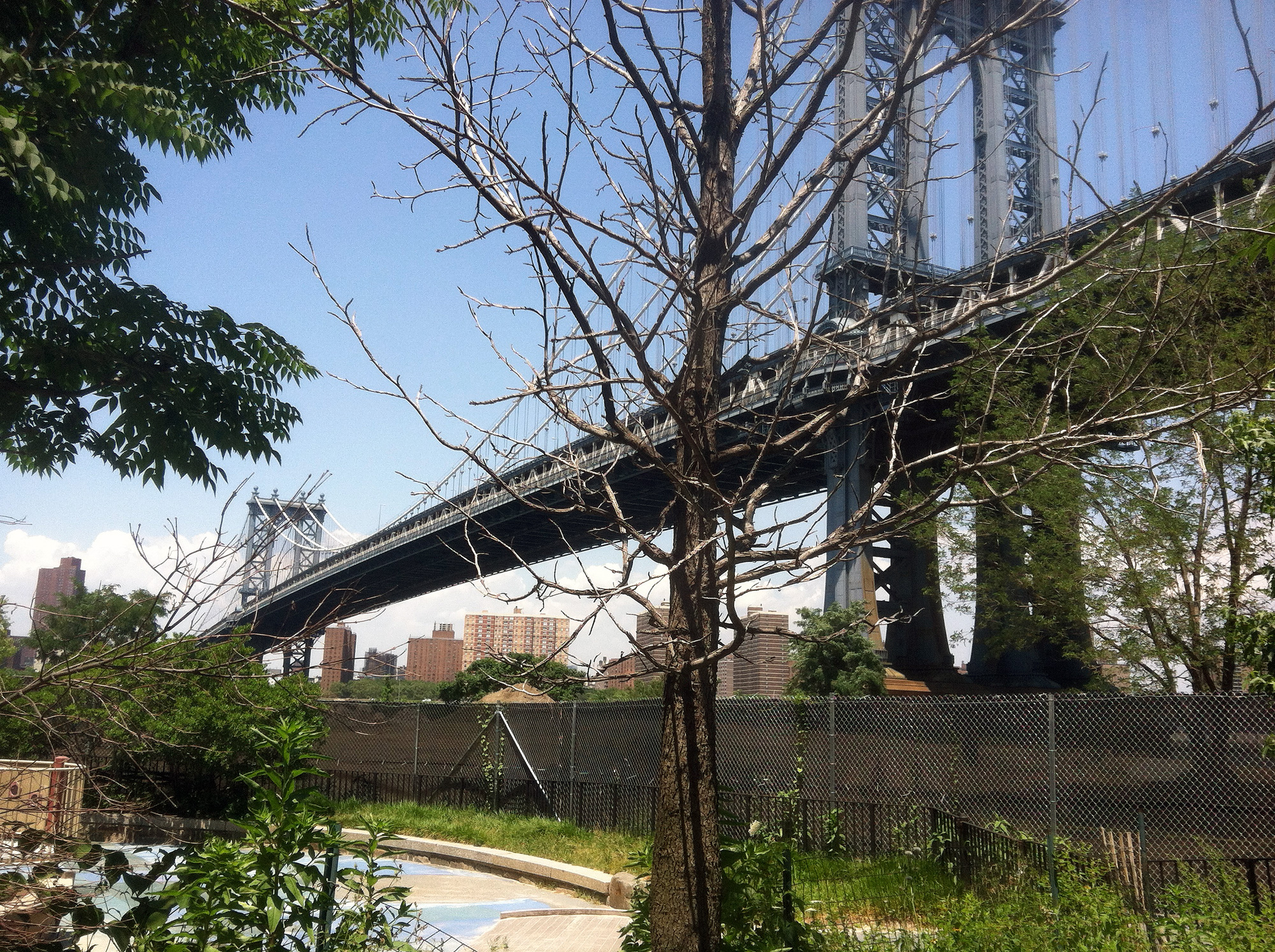 Brooklyn Bridge as photographed from Dumbo