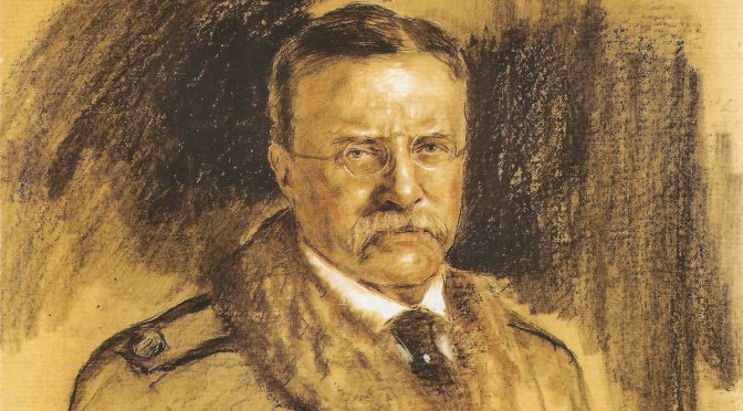 The post-presidency of Theodore Roosevelt